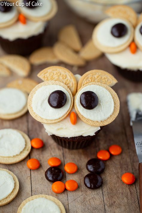Learn how to make cute owl cupcakes using Oreos and candy! These Easy Oreo Owl cupcakes are perfect for cupcake decorating parties all year long! Owl Cupcakes, Fancy Cupcakes, Easy Animal Cupcakes, Mocha Cupcakes, Gourmet Cupcakes, Strawberry Cupcakes, Easter Cupcakes, Flower Cupcakes, Velvet Cupcakes