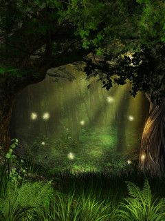 Magical Firefly Forest Wall Mural, Nature Landscapes Themed Premium Canvas Wall Art, Standard Peel & Stick | Limitless Walls