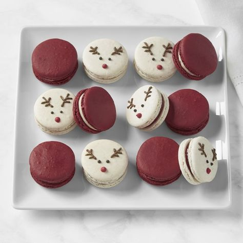 Shop Williams Sonoma's ultimate collection of Christmas chocolate gifts. Our holiday candy gift sets and Christmas chocolate gift sets are the perfect stocking stuffers. Christmas Candy Gifts, Holiday Candy, Christmas Snacks, Christmas Cupcakes, Holiday Cookies, Christmas Chocolates, Macarons Christmas, Cute Desserts, Holiday Baking