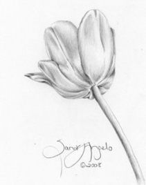 Flowers Drawing Pencil Tulip 52 Ideas Drawing Flowers Flower Drawing Tutorials Pencil Drawings Of Flowers Flower Sketch Pencil