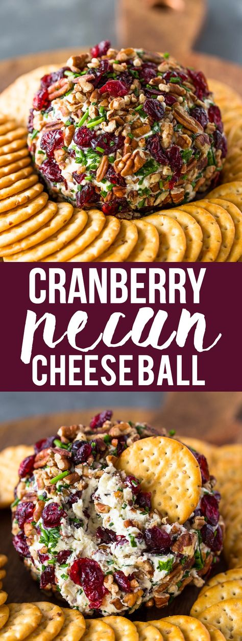 What better way to impress your family and guests this holiday season than with this festive cranberry pecan chive and garlic loaded cheese ball. This tasty Thanksgiving Appetizers, Thanksgiving Recipes, Holiday Recipes, Best Holiday Appetizers, Finger Food Appetizers, Yummy Appetizers, Cranberry Appetizer Recipes, Finger Foods, Dinner Recipes