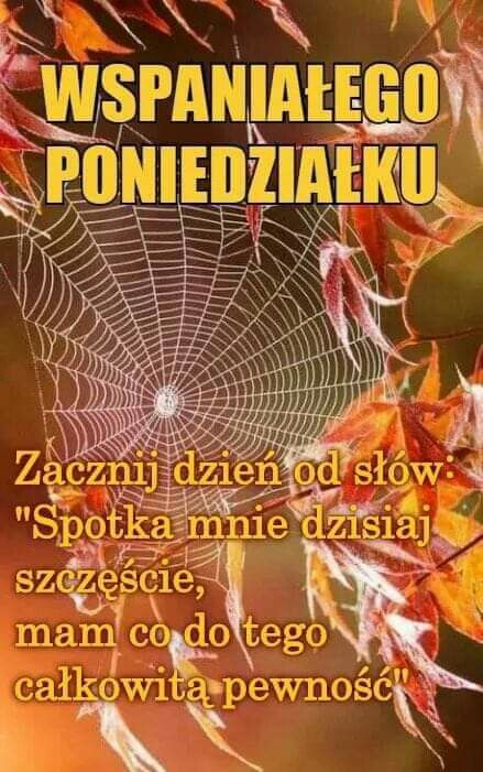 Pin By Wanda Swoboda On Poniedziałek