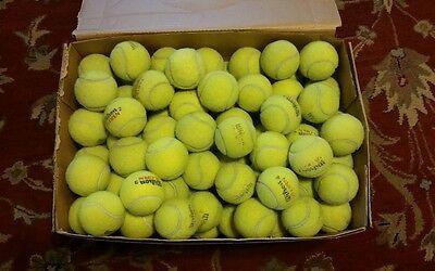 100 Used Tennis Balls Dog Toys Floor Protector Baseball In 2020 Tennis Balls Tennis Dog Toys