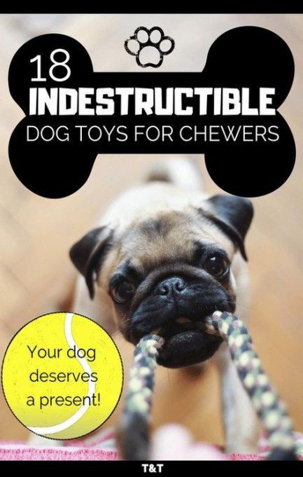 44 Trendy Diy Dog Toys For Heavy Chewers Puppys Diy Toys In 2020