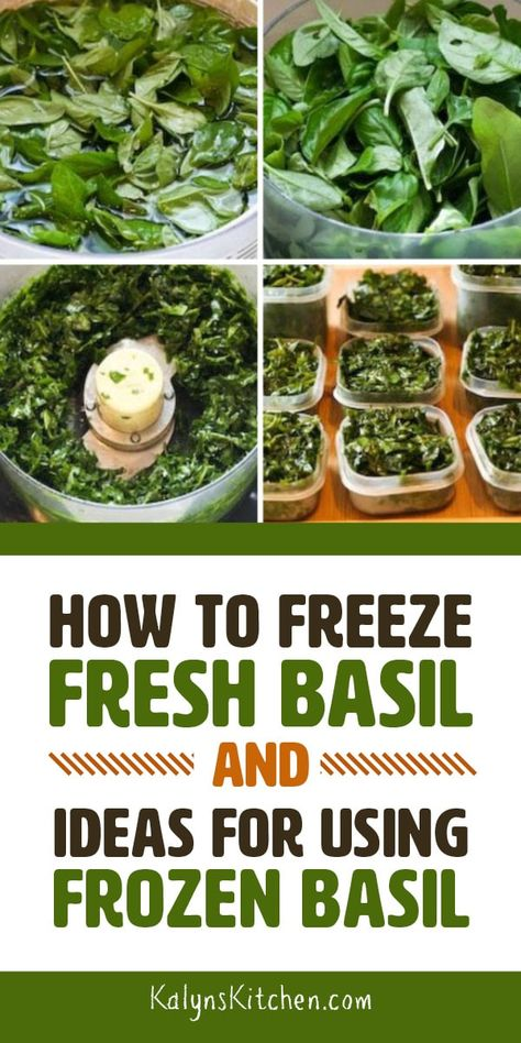 If you re growing basil in the garden or kitchen window this post can tell you How to Freeze Fresh Basil and give you Ideas for Using Frozen Basil I ve been freezing fresh basil for years and love having it in the freezer all year long found on Fresh Basil Recipes, Herb Recipes, Canning Recipes, Healthy Recipes, Vegetable Recipes, Freezing Basil, Freezing Fresh Herbs, Freezing Vegetables, Preserving Basil