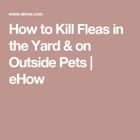 How to Kill Fleas in the Yard & on Outside Pets | eHow