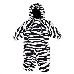 molo zebra overall