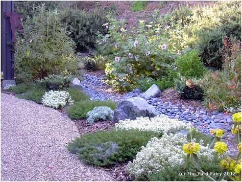 backyards enchanting landscaping ideas for front yard xeriscape from xeriscape landscaping, image source: serenavittorianitti.me