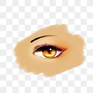 Gambar Mengedipkan Mata Alis Bola Mata Mata Clipart Sudut Mata Kelopak Mata Tunggal Png Transparan Clipart Dan File Psd Untuk Unduh Gratis Ilustrasi Bulu Mata Mamalia