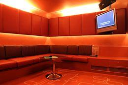 Open a chain of karaoke bars in London, NYC & Vegas !