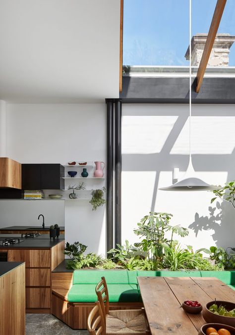 Austin Maynard Architects adds plant-filled conservatory in Newry house