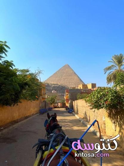 من تصويري منطقة اهرامات الجيزة و ابو الهول Patio Umbrella Patio Outdoor