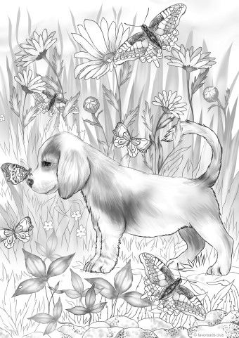 Friendly Puppy Horse Coloring Pages Adult Coloring Book Pages