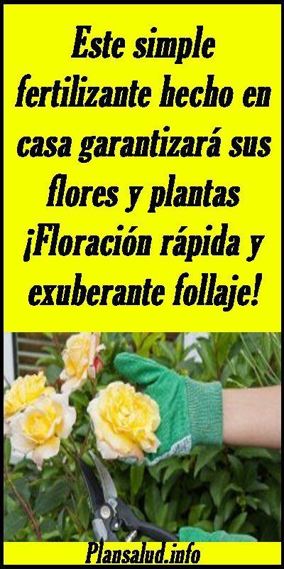 Este Simple Fertilizante Hecho En Casa Garantizará Sus Flores Y Plantas Floración Rápida Y Abonos Para Plantas Fertilizante Para Plantas Jardineria Y Plantas