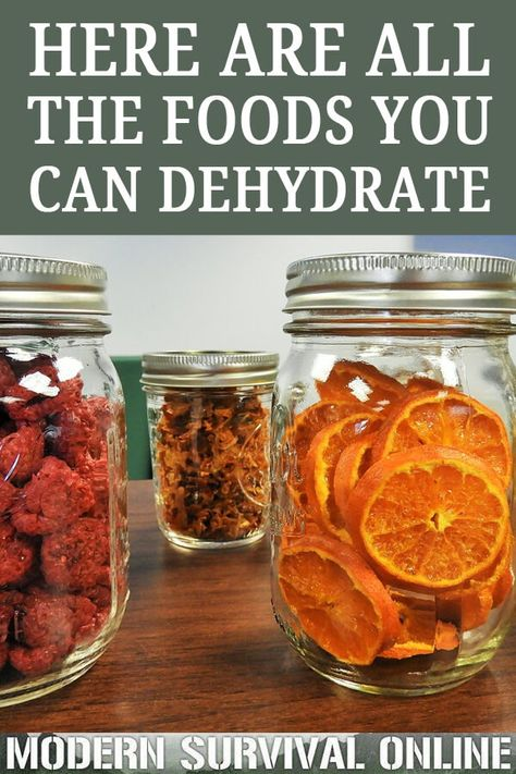 diy food Dehydration is an easy and a great food preservation method for your stockpile. Youd be amazed at all of the fruits, veggies and other foods you can dehydrate. Canning Food Preservation, Preserving Food, Konservierung Von Lebensmitteln, Dehydrated Vegetables, Dehydrated Food Recipes, Healthy Snacks, Healthy Recipes, Diabetic Snacks, Dehydrator Recipes