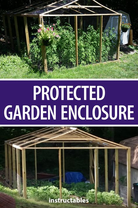 This protected garden enclosure by AlDee makes it easier to grow your own vegetables without the wildlife getting to them. #Instructables #woodworking #workshop #backyard #gardening