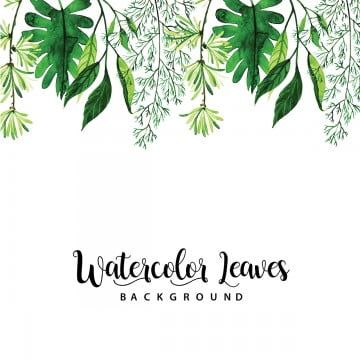 Watercolor Leaves Png Images Vector And Psd Files Free Download On Pngtree Watercolor Leaves Watercolor Leaf Drawing