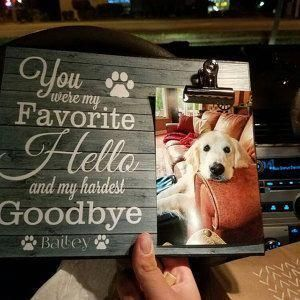 Pin By Abbie Shields On Cute Dogs In 2020 Pet Picture Frame Pet Remembrance Dog Memorial