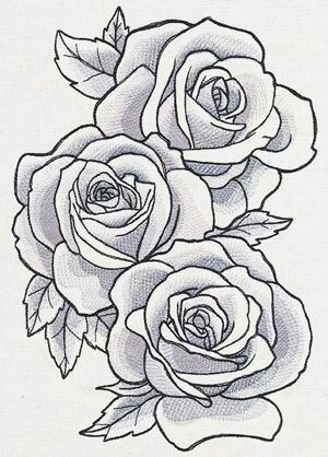 Perfect Shape Shading And Leaves Rose Drawing Tattoo Roses Drawing Flower Drawing