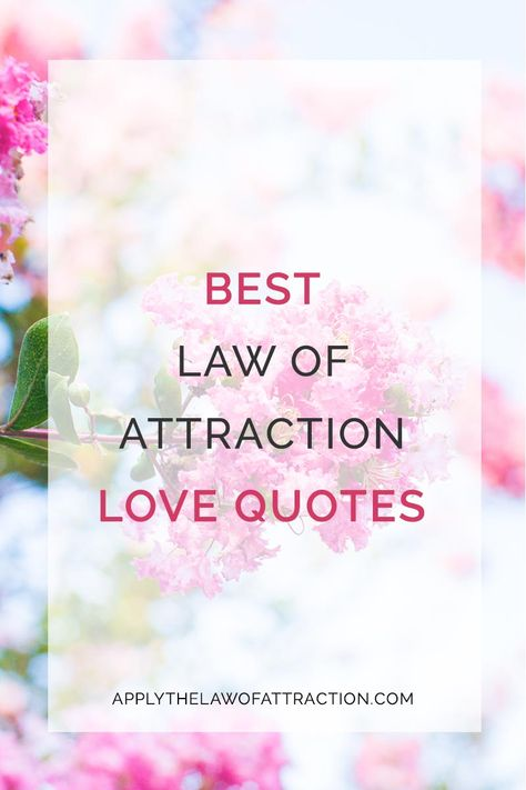 Love Attraction Quotes Enchanting Best Law Of Attraction Love Quotes