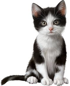 🐈🐈Fans of Kittens Meow? #CLICK #SAVE #FOLLOW #PIN #aninspiring to check out unique gifts, decors & DIY craft for Cute Kitties Cats Doodle, Vector, Crochet, Makeup, And Puppy, Desenho, Pretty, Spencer, Face, Pryde, Daddykink, Costume, And Puppies, , Logo, Quotes, Illustration, Playera, Tattoo, Art, Word, Cute, Fondos, Letras, Funny, Dibujos, Drawing, Meme, Party, Desenho, Fiesta, Videos, Aesthetic, Wolf, Pokemon, Kitty, Text, Girl, Gatos,Anime,Schriftzug,Shirt,Calligraphy,Cartoon,Lettering