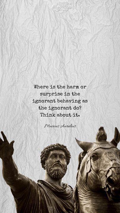 Stoicism Stoicism Quotes Philosophy Quotes Stoic Quotes