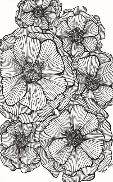 Flowers Black Background Drawing 15 New Ideas Flower Drawing Design Doodle Art Flowers Flower Drawing