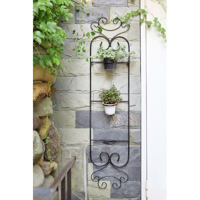 Colona 3 Pot Cast Iron Wall Planter In 2020 Metal Wall Planters Wall Planter Ceramic Wall Planters