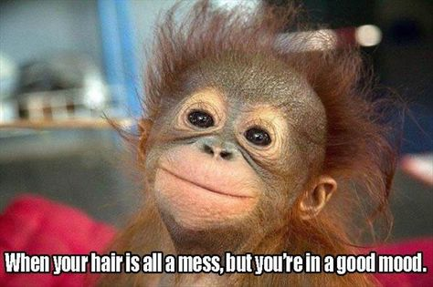 When your hair is all a mess but youre in a good mood.