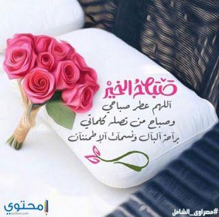 بوستات صباح الخير اجمل رسائل صباح الخير Beautiful Morning Messages Good Morning Flowers Good Morning Beautiful Images