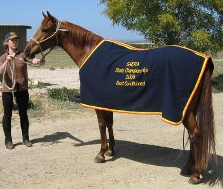 Embroidered Horse Rugs With Images