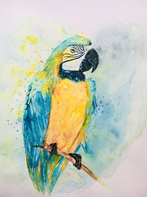 Parrot Art Blue And Yellow Watercolor Splash Design Dessin