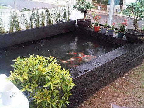 desain kolam ikan minimalis diluar rumah - sebuah rumah