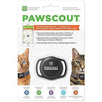 Pawscout Smarter Pet Tag Cat Version Pet Tags Pet Tracker Pets
