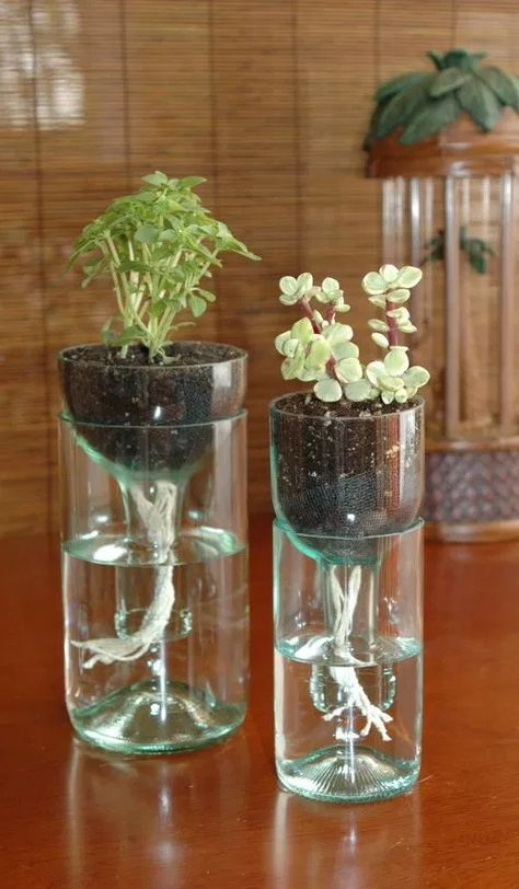 Self Watering Recycled Wine Bottle Planter How ToYou can find Old wine bottles and more on our website.Self Watering Recycled Wine Bottle Planter How To Wine Bottle Planter, Old Wine Bottles, Recycled Wine Bottles, Wine Bottle Art, Bottle Garden, Diy Bottle, Recycled Glass, Water Garden, Wine Corks