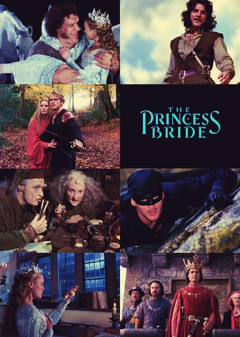 Princess Bride = Inconceivably Awesome. I do not think that word means, what you think it means. Hello, my name is Inigo Montoya, you killed my father, prepare to die. He's only mostly dead!  I'm not a witch I'm your wife.  CLASSIC