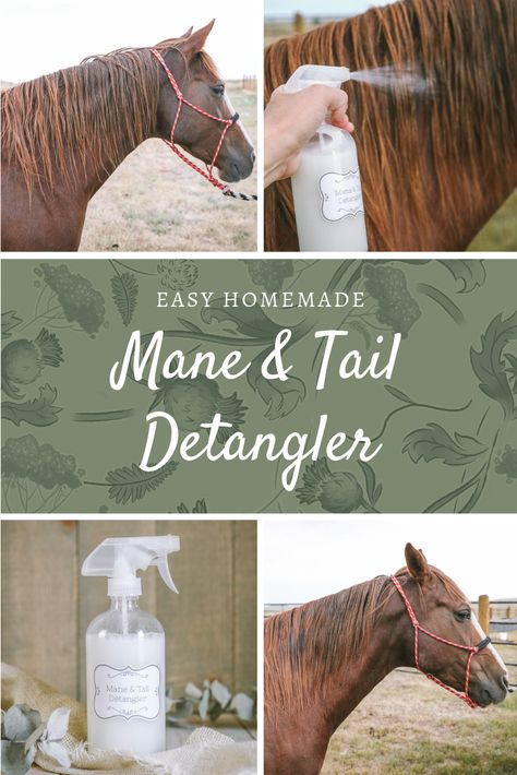 This homemade mane and tail detangler recipe will leave your horses hair silky and smooth. It's similar to Show Sheen sprays, but you can make it yourself! Great for humans too that suffer from wind blown, damaged hair. Horse Gear, My Horse, Horse Love, Fly Spray For Horses, Horse Tail, Horse Care Tips, Horse Facts, Horse Grooming, The Ranch