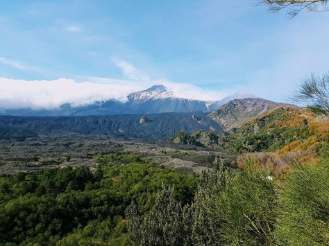 natura Etna view. #etna #sicily...