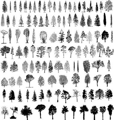 Third from bottom, fourth from left Tree silhouettes vector 156485 - by dylandog on VectorStock®