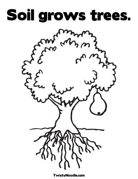 Pear Tree Coloring Page Tree Coloring Page Coloring Pages