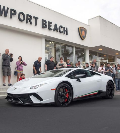 Guy buys lambo with bitcoins printable 10 line sports betting board