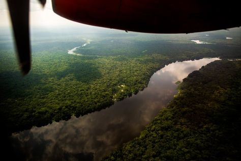 An Aerial View Of The Congo River Basin The Congo Basin Forest
