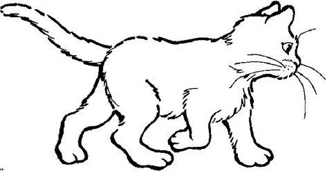 Katzen Malvorlagen Zum Ausdrucken 126 Malvorlage Katzen