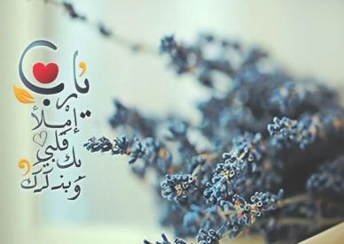 أحلى صور رمزيات يارب جميلة جدا عالم الصور Quran Quotes Love Islamic Pictures Quran Quotes