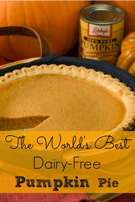 I love the Fall. Somehow it just feels like you need to settle in with a Snuggie a warm hot cocoa and some pumpkin pie. I love the Fall. Somehow it just feels like you need to settle in with a Snuggie a warm hot cocoa and some pumpkin pie. Dairy Free Pumpkin Pie, Paleo Pumpkin Pie, Best Pumpkin Pie, Pumpkin Pie Recipes, Pumpkin Pies, Healthy Pumpkin, Pumpkin Pie Recipe Coconut Milk, No Dairy Recipes, Dairy Free Desserts