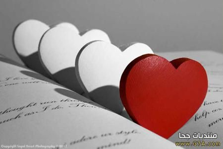 كلام حب جامد للحبيب فيس بوك Love Smile Quotes Romantic Words Sweet Love Quotes
