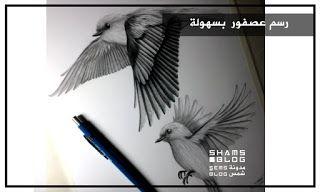 مدونة شمس تعلم رسم عصفور يطير