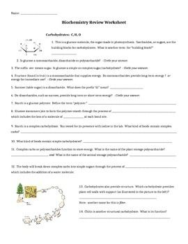 Biochemistry Review Worksheet