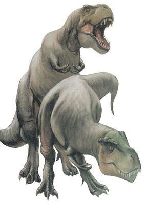 Collecta Dinosaur T Rex With Prey Toy Animal Replica Tyrannosaurusrex Pet Toys Animals Dinosaur Toys