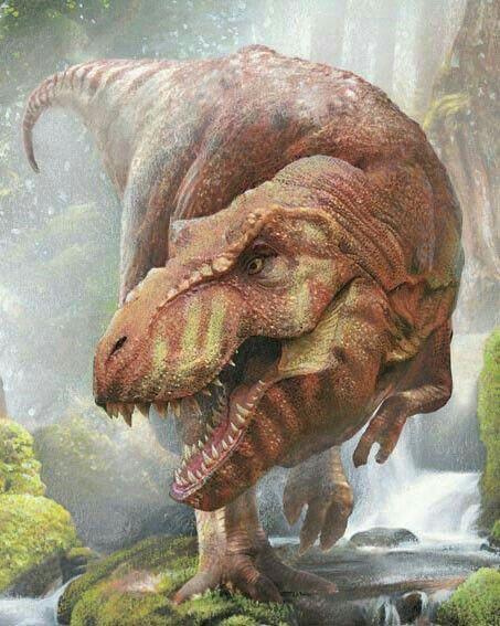 Tiranosaurus Rex Dinosaurier Dinosaurierbilder Dinosaurier Illustration